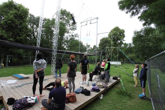 Gorilla Trapeze